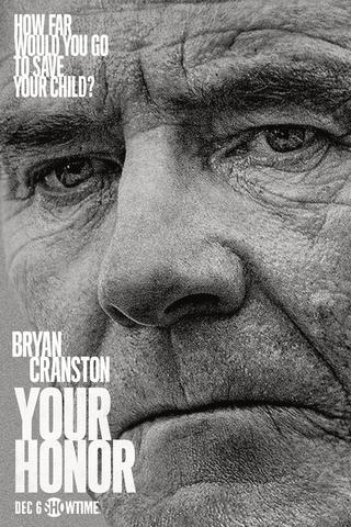 Your Honor - Saison 1